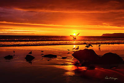 Photograph - Sunset Surprise by Dan McGeorge