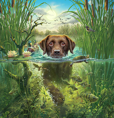 Chocolate Labrador Retriever Digital Art - Sunset Swim With Friends by Mark Fredrickson