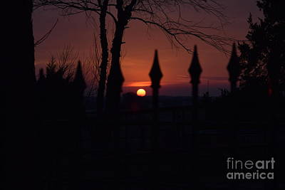 Photograph - Sunset Through The Fence by Mark McReynolds