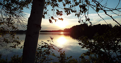 Photograph - Sunset Through The Trees by Angela Wile
