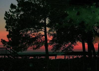 Digital Art - Sunset Through The Trees by Ellen Barron O'Reilly