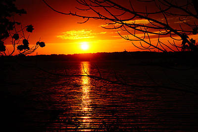 Sunset Through The Trees Art Print by Mike Murdock