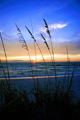 Sunset Thru The Sea Oats At Delnor Wiggins Art Print