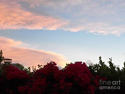 Photograph - Sunset Time 6 by Randall Weidner