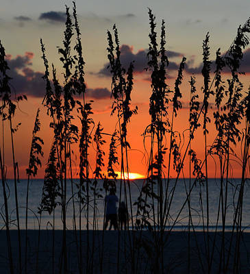 Photograph - Sunset Together by David Lee Thompson