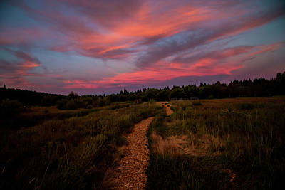 Photograph - Sunset Trail Walk by Doug Scrima