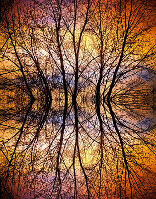 Sunset Tree Silhouette Abstract 1 Art Print