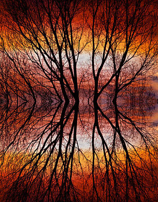 Sunset Tree Silhouette Abstract 2 Art Print by James BO  Insogna