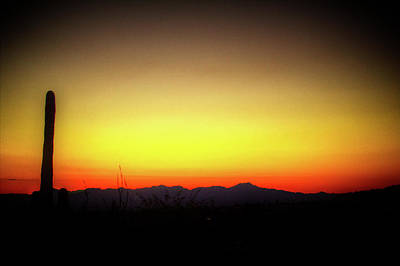 Photograph - Sunset Tucson Arizona by Roger Passman