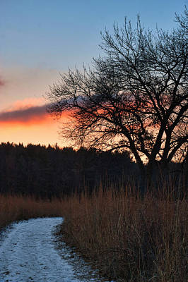 Photograph - Sunset - Uw Arboretum - Madison - Wisconsin by Steven Ralser