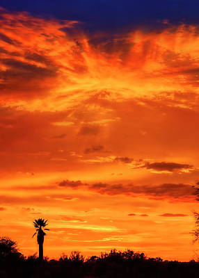 Mark Myhaver Rights Managed Images - Sunset v414 Royalty-Free Image by Mark Myhaver