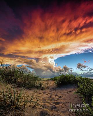 Photograph - Sunset Venice Beach by Damon Powers