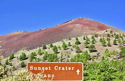 Photograph - Sunset Crater Volcano by Lorna Maza