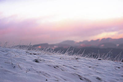 Photograph - Sunset Winter Field by Jenny Rainbow