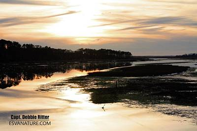 Photograph - Sunset Winter Marsh 6336 by Captain Debbie Ritter