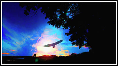 Photograph - Sunset With Eagle Silhouette by A Gurmankin