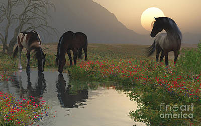 Sunset With Horses By The Stream Art Print