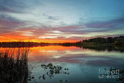 Photograph - Sunset With Muskrat by David Arment