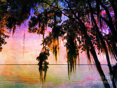 Photograph - Sunset With Spanish Moss by Judi Bagwell