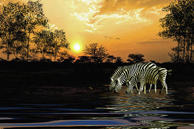 Digital Art - Sunset Zebras At The Watering Hole by Diane Schuster