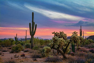 Photograph - Sunsets Done Southwest Style  by Saija Lehtonen