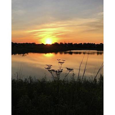 Brush Wall Art - Photograph - Amber Sunset By The Lake by Phunny Phace