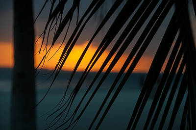 Digital Art - Sunsets On The Beach At Isla Mujeres by Carol Ailles