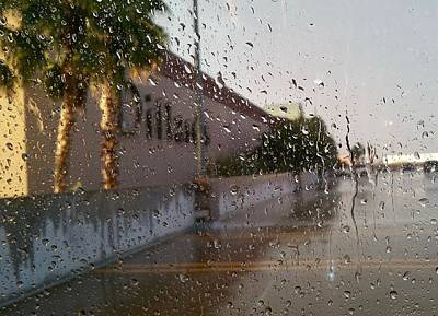 Photograph - Sunshine After Rain by Kume Bryant