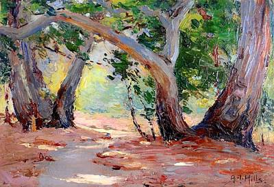 Plain Air Painting - Sunshine And Shadows - Orange County Park California by Mountain Dreams