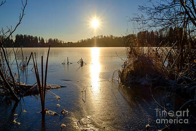 Photograph - Sunshine At The Frozen Lake Enajarvi by Ismo Raisanen