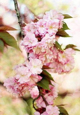 Cherry Blossoms Digital Art - Sunshine Blossom by Jessica Jenney
