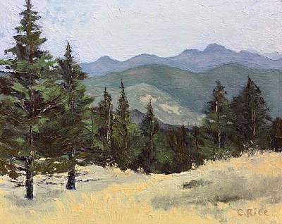 Painting - Sunshine Canyon by Chris Rice
