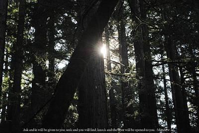 Photograph - Light Of Possibilities With Matthew 7-7 Scripture by Matt Harang