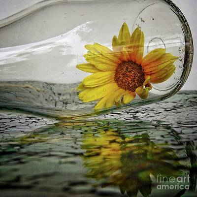 Photograph - Sunshine In A Bottle - Reflection by Ella Kaye Dickey