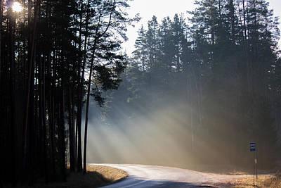 Busstop Photograph - Sunshine In November by Igor Tseskidov
