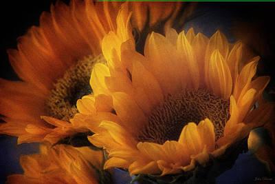 Photograph - Sunshine by John Rivera