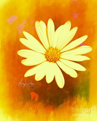 Photograph -  Sunshine  by MaryLee Parker
