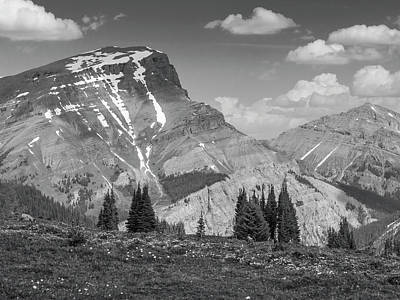 Photograph - Sunshine Meadows by Mark Mille