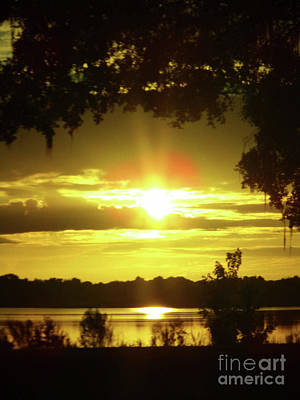 Photograph - Sunshine Morning At The Lake by D Hackett