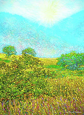 Digital Art - Sunshine Mountain Meadow - View Of Colorado Front Range by Joel Bruce Wallach