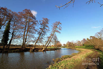 Photograph - Sunshine On The River Wey At Send Surrey Uk by Julia Gavin