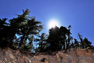 Photograph - Sunshine Over Cliff In Forest by Matt Harang
