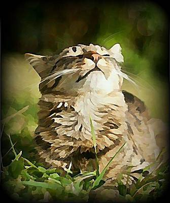 Pet Wall Art - Digital Art - Sunshine Purrfection by Raven Hannah