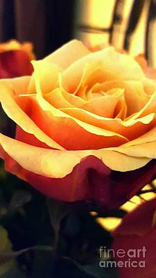 Photograph - Sunshine Rose by Marlene Williams
