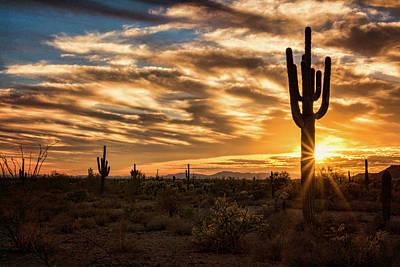 Photograph - Sunstar Saguaro Sunset  by Saija Lehtonen