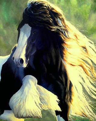 Pinto Painting - Sunstruck Vanner by Ruanna Sion Shadd a'Dann'l Yoder