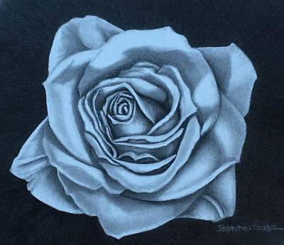 Contemporary Botanical Art Drawing - Suntana Rose by Jeannice Gordon
