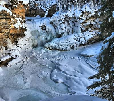 Photograph - Sunwapta Falls Frozen by Adam Jewell