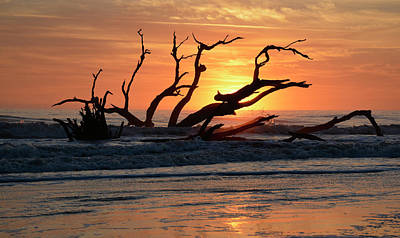 Photograph - Supended Sunrise On Driftwood Beach by Bruce Gourley
