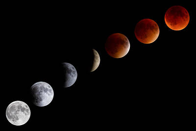 Photograph - Super Blood Moon Eclipse by Brian Caldwell